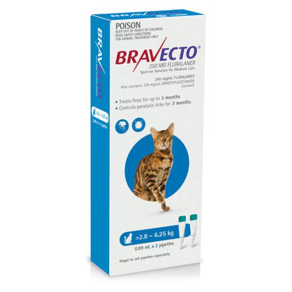 Bravecto Blue Spot-on for Medium Cats - 2 Pack 1